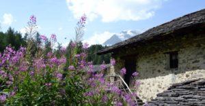 Village du Monal Savoie