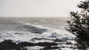 """Série """"Contre vents et marées"""" 15"""